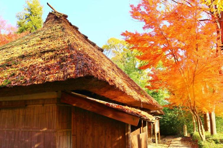 Shikoku-mura|四国村