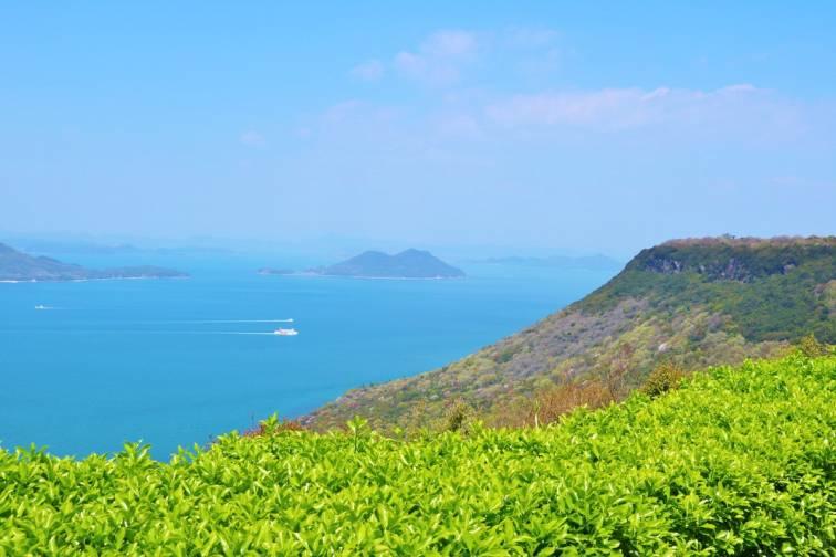 Mt.Yashima|屋島