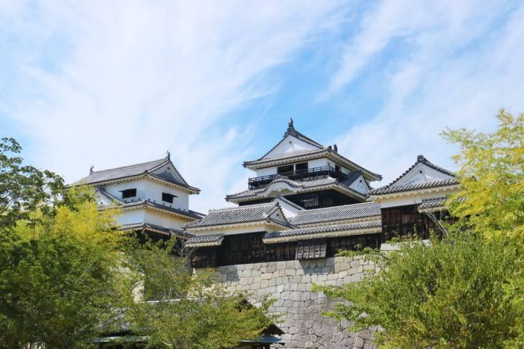 마츠야마 성|松山城