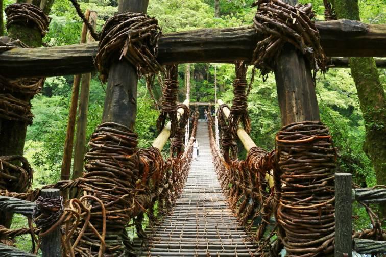 祖谷的葛橋